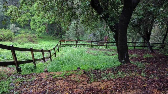 Fast Internet on a Horse Farm in Santa Cruz County
